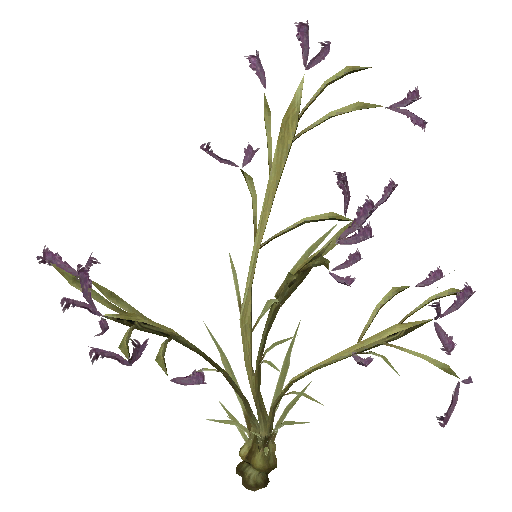 Recipe: Desert Flower