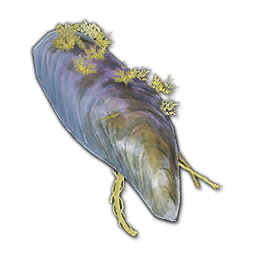 Recipe: Deciduous Cavern Shell (Whale) 2