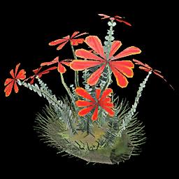 Recipe: Bloodtear Plant (Large)