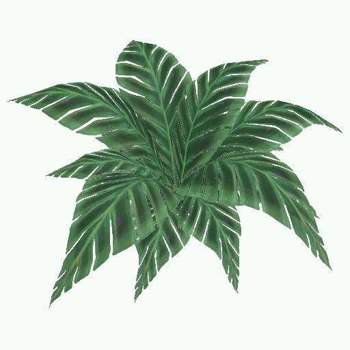 Recipe: Jungle Fern (with Butterflies)