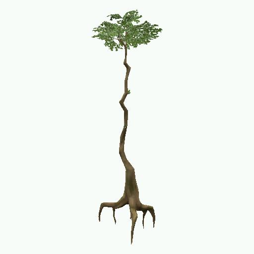 Recipe: Jungle Banyan (Tiny)