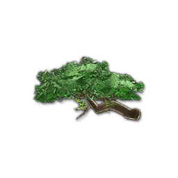 Recipe: Jungle Tree Branch (Medium)