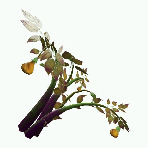 Recipe: Amberleaf Plant