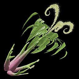 Recipe: Jute Plant (Perfect)
