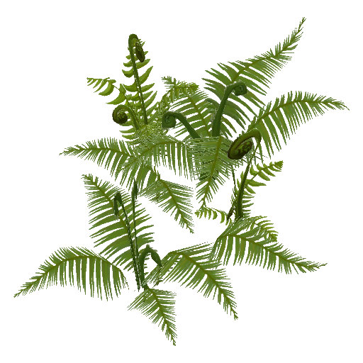 Recipe: Old Growth Fern Cluster 1