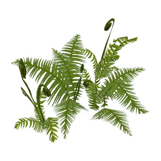 Recipe: Old Growth Fern Cluster 2