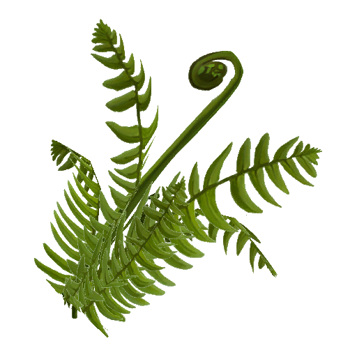 Recipe: Old Growth Ferns (Mixed with Mosquitoes) 1