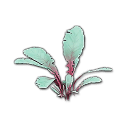 Recipe: Jungle Seedling (with Fireflies) 2