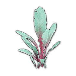 Recipe: Jungle Seedling 3