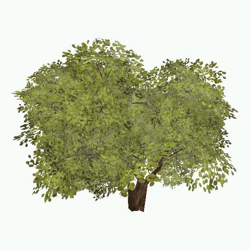 Recipe: Deciduous Hedge (Leafy) 2