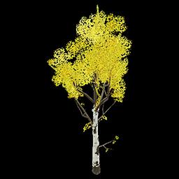 Recipe: Deciduous Birch Tree (Medium) 4