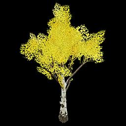Recipe: Deciduous Birch Tree (Medium) 6