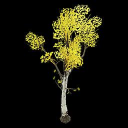 Recipe: Deciduous Birch Sapling 2