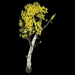 Recipe: Deciduous Birch Sapling 4