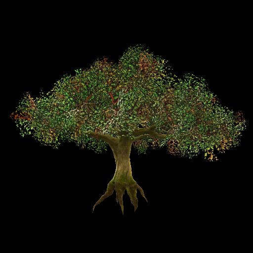 Recipe: Giant Oak