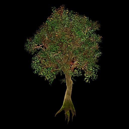 Recipe: Deciduous Oak Tree (Large) 1
